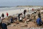 Scotland's Coastal Heritage at Risk