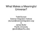 What Makes a Meaningful Universe?