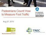 Webinar: Pedestrians Count! – How to Measure Foot Traffic