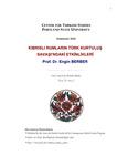 Kibrisli Rumlarin Turk Kurtulus Savasi'ndaki Etkinlikleri (Greek Cypriots Turkish Liberation Events in War)
